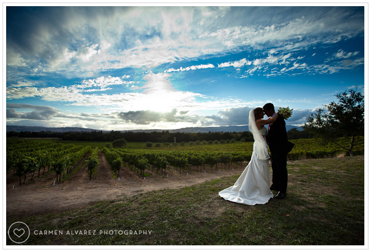 Gundlach-Bundschu Winery, Sonoma Wedding Photography