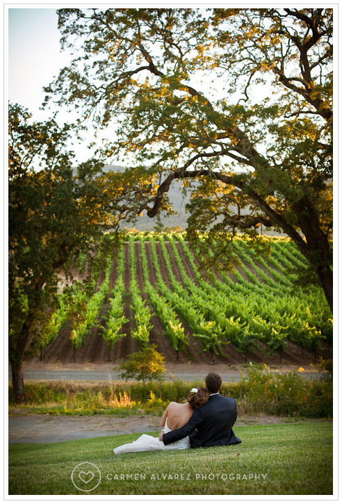 B.R. Cohn Winery wedding photos, Sonoma wedding photography